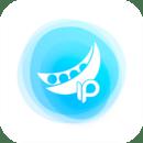 豌豆代理IP