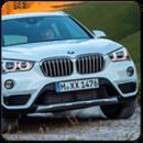 X1 BMW car racing simulator