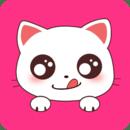 小猫翻译器